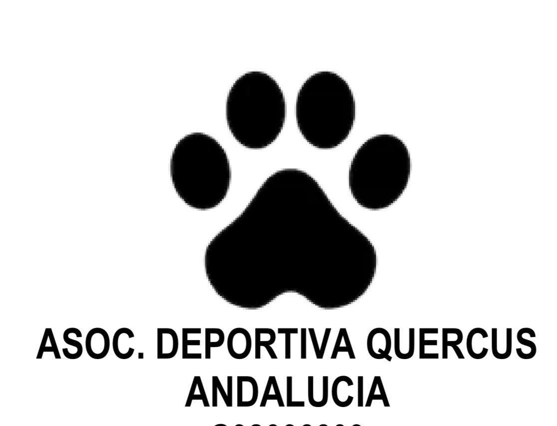 Adopta un perro en Málaga